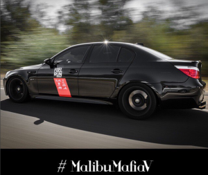 Malibu Mafia V